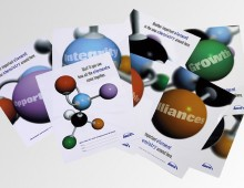 Arch Chemicals – brochure