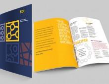 SDI Brochure