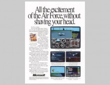 Microsoft – flight sim